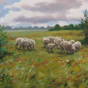 Pasture with Sheep