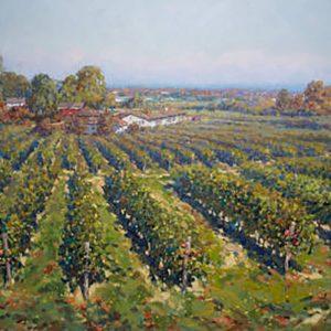Niagara Vineyard View
