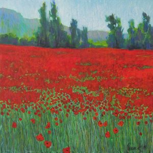 Poppy Field in the Luberon