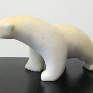 Polar Bear Stepping