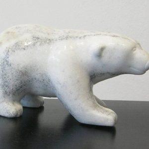 Striped Polar Bear