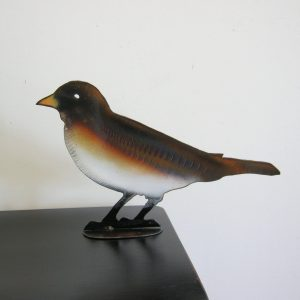Songbird 13