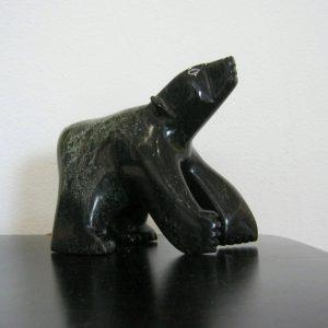 Head Up Bear