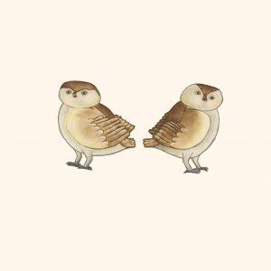 2019  Owlettes