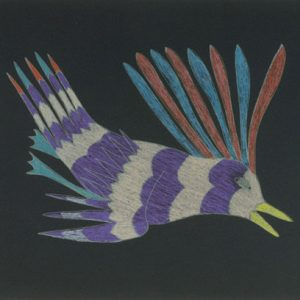 2011 Curious Bird