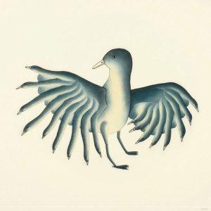 2011 Shorebirds