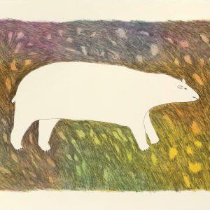 2012 Tundra Bear
