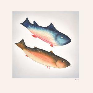 2014 Diving Fish